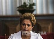 Tòa Tối cao Brazil bác đề nghị hoãn điều trần của bà Rousseff