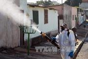 Công bố lô vắc xin chống Zika trong tháng 10/2016
