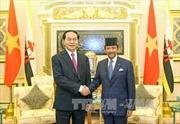 Tuyên bố chung Việt Nam - Brunei Darussalam