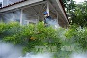 Malaysia thông báo ca đầu tiên nhiễm virus Zika trong nước