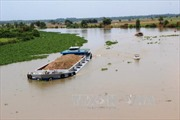 Cần làm rõ việc lấn rạch thoát nước ra sông Vàm Cỏ Đông