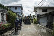Thái Lan, Malaysia trấn an du khách về virus Zika
