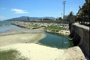 Nhiều nguồn gây ô nhiễm biển