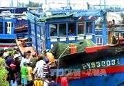 Các ngư dân Việt Nam gặp nạn được Trung Quốc giúp đỡ về nước