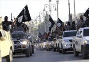 IS bắn hạ máy bay chiến đấu của Syria