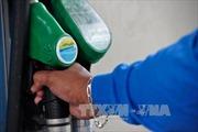 Giá dầu, giá vàng thế giới cùng đi lên