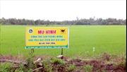 Tái cơ cấu nông nghiệp để chủ động hội nhập