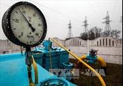 """""""Học"""" Ukraine, Belarus chiến tranh năng lượng với Nga"""