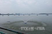 Khẩn trương tăng cường oxy, làm sạch nước Hồ Tây