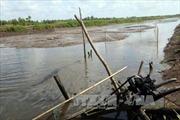 Xử lý nghiêm ăn chặn thủy lợi phí tại Ứng Hòa, Hà Nội