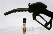 Giá dầu thế giới tăng lên mức cao nhất trong nhiều tháng
