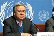 Tân TTK LHQ muốn phân bổ người tị nạn trên toàn thế giới
