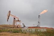 Giới chuyên gia dự báo về 'cú sốc' dầu mỏ