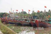 Thái Bình di dân vào trong đê chính, đến nơi trú bão an toàn