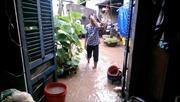 An Giang: Mưa lớn, nhiều nhà dân chìm trong nước