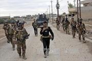 Các lực lượng Iraq giành lại 6 quận ở phía Đông Mosul