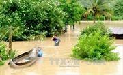 Mưa lũ tại Bình Định làm 2 người chết, thiệt hại hơn 100 tỷ đồng
