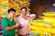 Bộ sản phẩm phân bón Phú Mỹ được công nhận Thương hiệu Quốc gia