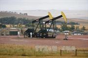 Sản lượng khai thác dầu của OPEC cao kỷ lục