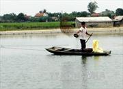 Bắc Giang nâng cao giá trị nuôi trồng thủy sản