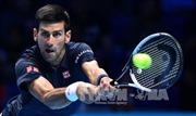 Cán mốc 30 trận thắng ATP, Djokovic tạm giữ ngôi vương