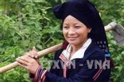 Biểu dương đồng bào dân tộc thiểu số Phú Thọ