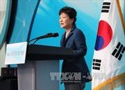 Nội các Hàn Quốc sẽ họp vắng mặt Tổng thống Park Geun Hye