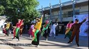 Sôi động lễ hội văn hóa Việt Nam tại Canberra, Australia