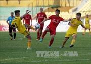 Bóng đá Việt Nam tăng 7 bậc trên bảng xếp hạng thế giới