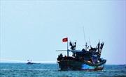 Khẩn trương cứu hộ tàu cá cùng 7 ngư dân gặp nạn trên biển