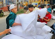 Hỗ trợ gạo cho 3 tỉnh bị ảnh hưởng bởi bão lũ
