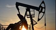OPEC nhất trí cắt giảm sản lượng dầu mỏ