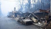 Rừng cháy rụi tại Mỹ, hơn 50 người thương vong