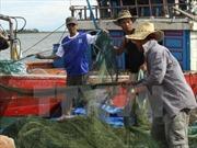 Ngăn chặn tình trạng trộm cắp ngư lưới cụ trên biển