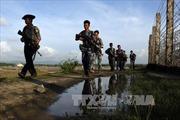 Myanmar kêu gọi ASEAN họp khẩn về vấn đề người Rohingya