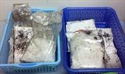 Bắt vụ vận chuyển ma túy tại khu vực Cửa khẩu quốc tế Mộc Bài