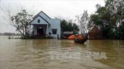 Huyện Nông Sơn, Quảng Nam bị cô lập bởi nước lũ