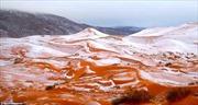 """Ngắm tuyết rơi trên sa mạc Sahara đẹp """"mê li"""""""