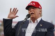 Ông Trump tuyên bố giải thể quỹ từ thiện Trump Foundation