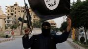 IS tấn công sát hại 30 dân thường gần Aleppo
