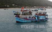 Lai dắt tàu cá cùng 5 ngư dân bị nạn trên biển về bờ an toàn
