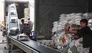 Bãi bỏ Quy hoạch thương nhân kinh doanh xuất khẩu gạo