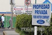Ford hủy dự án, Mexico có thể thiệt hại hàng tỉ USD