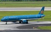 Hành khách được mang 2 cành đào, mai khi bay Vietnam Airlines dịp Tết Đinh Dậu