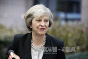 """Thủ tướng Anh bác kịch bản """"Brexit cứng"""""""