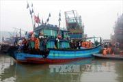 Cứu nạn tàu cá bị hỏng máy thả trôi trên biển