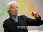IMF đánh giá Mỹ dễ bị tổn thương trước chiến tranh thương mại