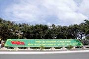 Đất Mũi Cà Mau rộn ràng mùa xuân tuổi 20