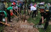 Hà Nội tăng cường xã hội hóa trong trồng cây xanh