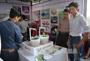 Hà Nội ươm tạo 14 dự án startup công nghệ thông tin đổi mới sáng tạo